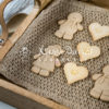 Gingerbread Cookie Mould