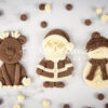 Christmas Cookie Mould