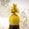 Tropical Pineapple Mould